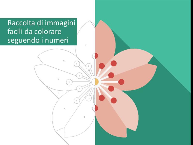 Raccolta di immagini facili da colorare seguendo i numeri