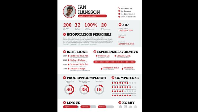 Infografica dettagliata del curriculum