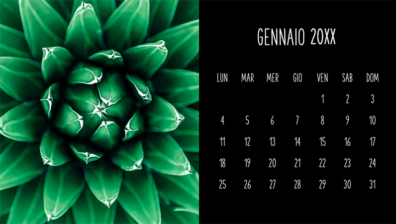 Calendario mensile con piante grasse