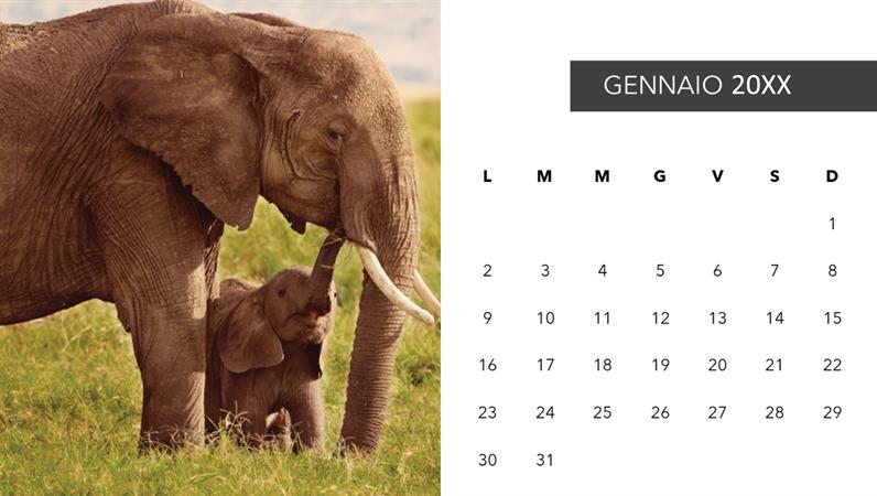 Calendario fotografico con animali graziosi
