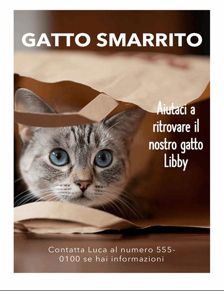Volantino per gatto smarrito