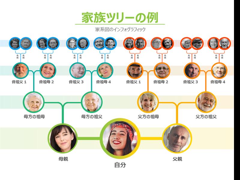私の家系図