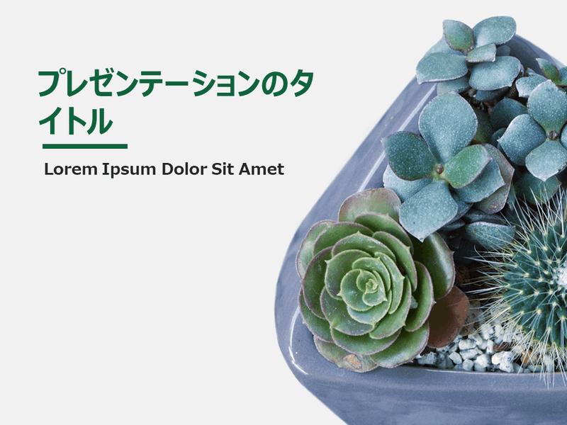植物のデザイン スライド