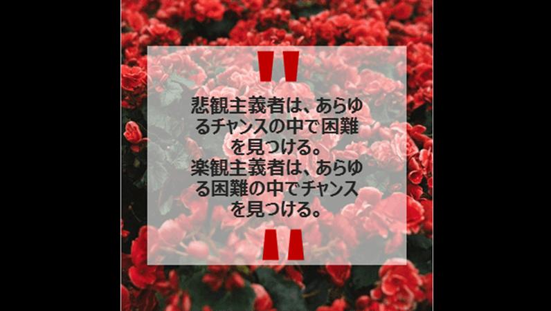 Instagram のニュースと引用 (縦)