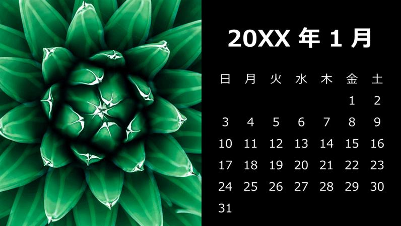 多肉植物の月間カレンダー