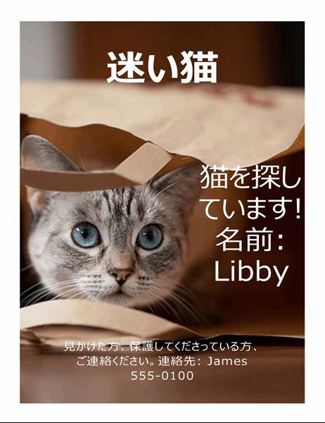 迷い猫のチラシ