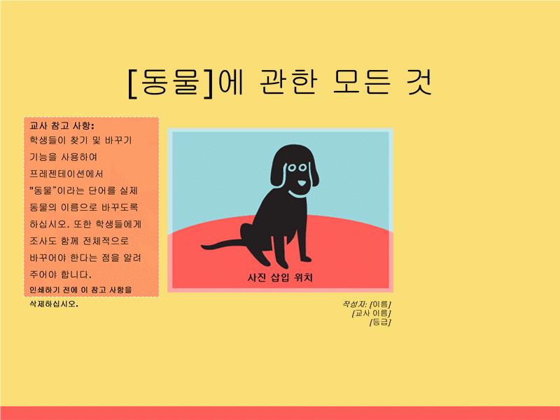 동물에 관한 보고서 프레젠테이션(초등학교)