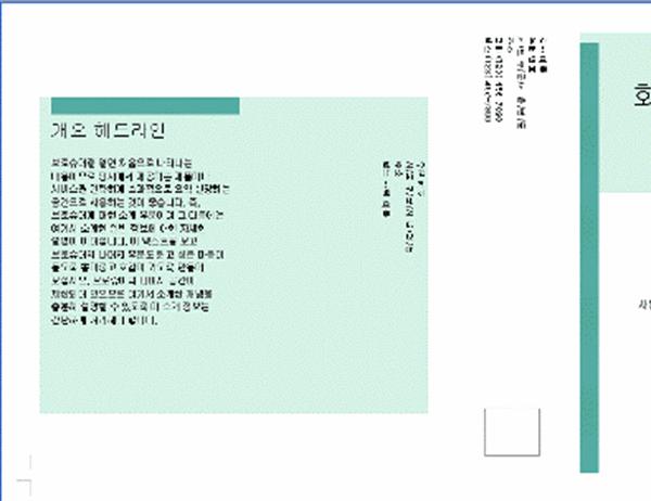 비즈니스 브로슈어(21.59cm x 35.56cm, 3단, 2페이지, 우편물)