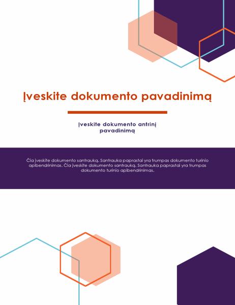 Ataskaita (administracinis dizainas)