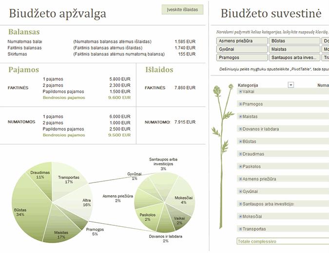 Šeimos biudžetas (mėnesio)