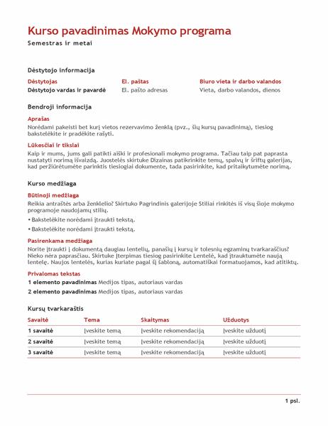 Mokytojo mokymo programa (spalvota)