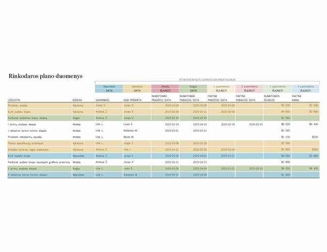 Rinkodaros projekto planas