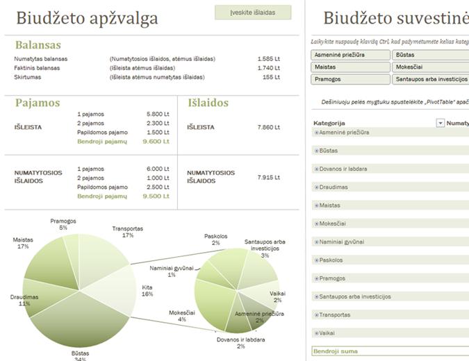Šeimos biudžetas su diagramomis