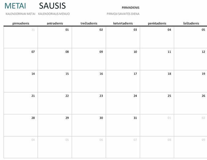Bet kurių metų vieno mėnesio kalendorius
