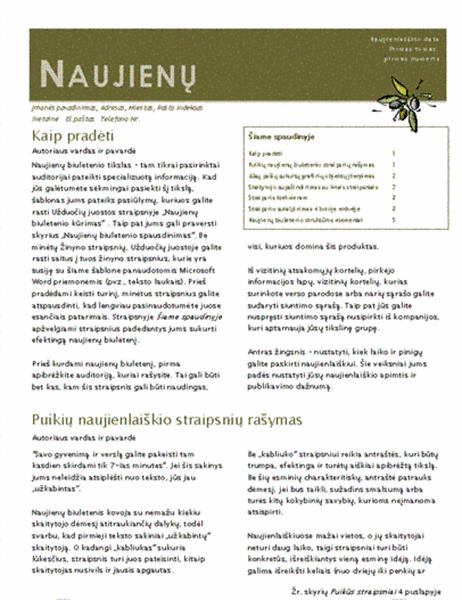 Verslo naujienlaiškis (2-jų stulpelių, 6-ių psl., skirtas siųsti paštu)