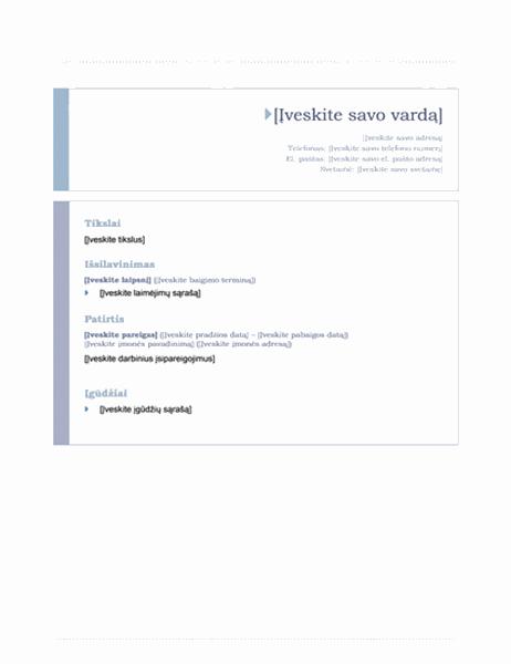 Ataskaita (pradinis dizainas)