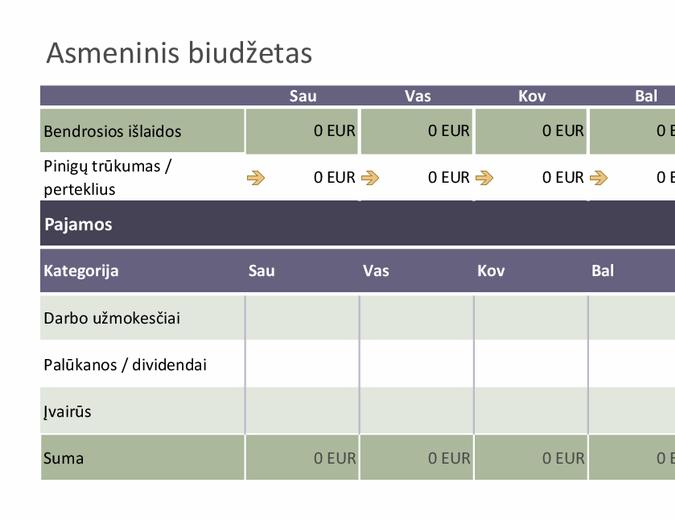 Bazinis asmeninis biudžetas