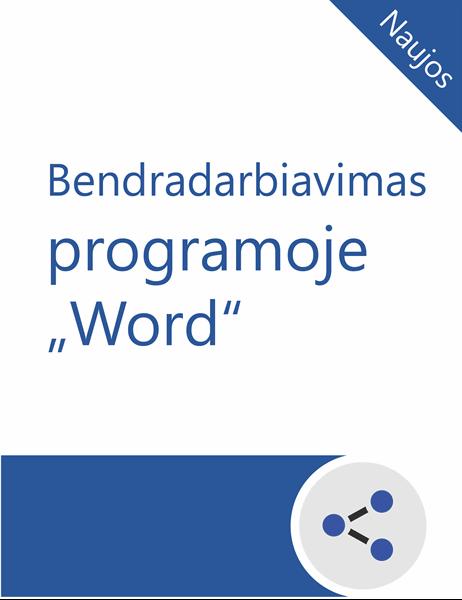 """Bendradarbiavimo programoje """"Word"""" mokymo priemonės"""