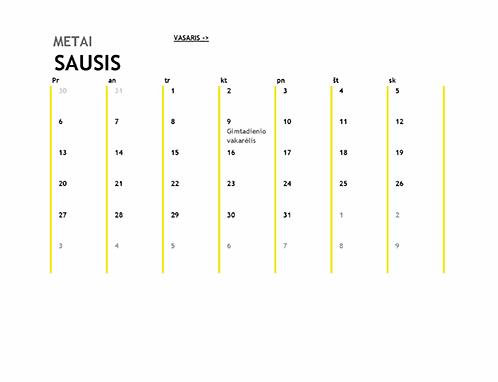 12 mėnesių kalendorius