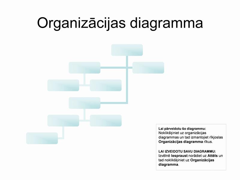 Sarežģīta organizācijas struktūra