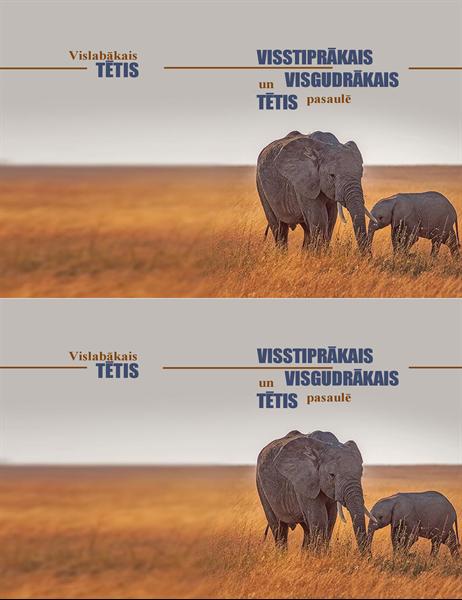 Vieds zilonis: Tēva dienas kartīte