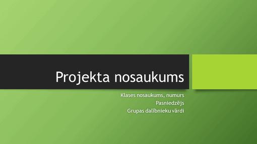 Grupas projekta prezentācija (Berlīnes dizaini, platekrāna)