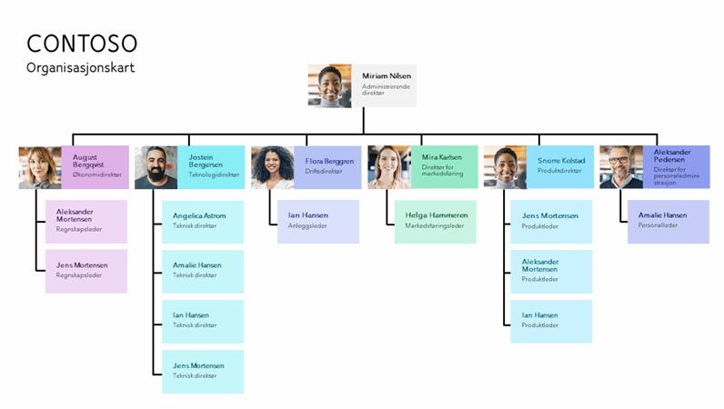 Minimalistisk organisasjonskart