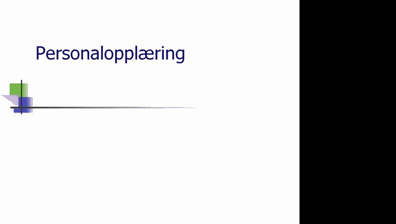 Presentasjon av personalopplæring