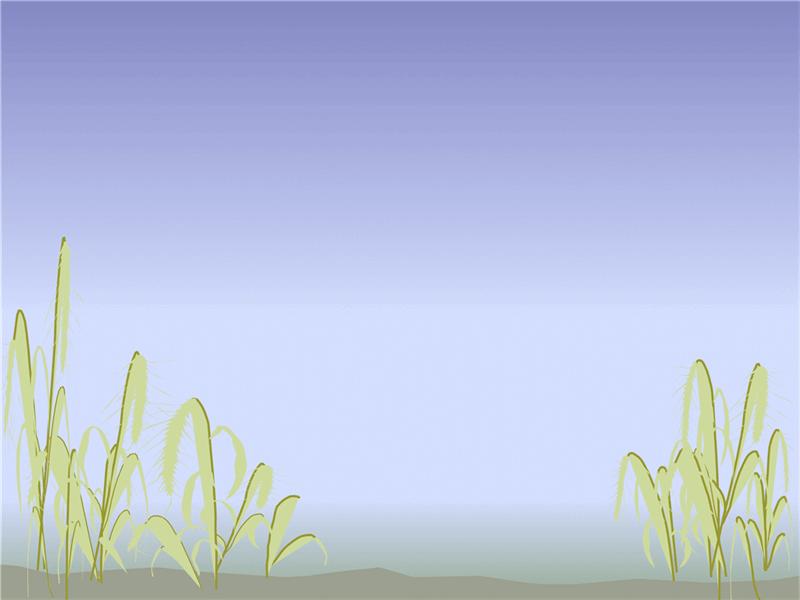 Utformingsmal med kystmotiv