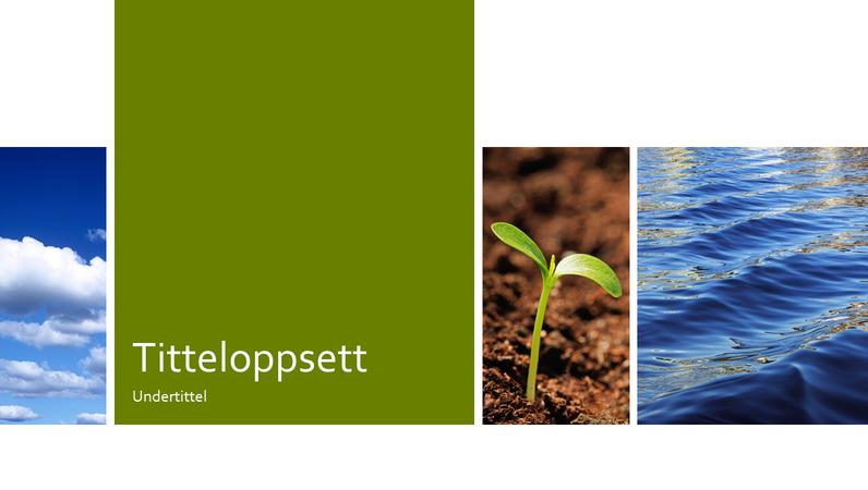 Fotopresentasjon for utdannelse innen natur og økologi