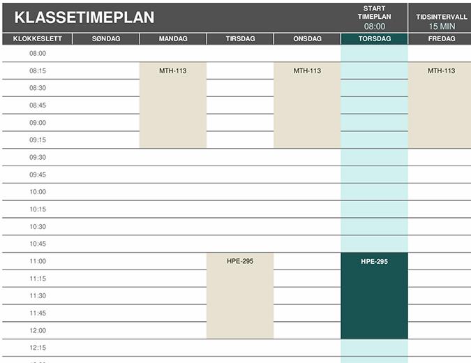 Timeplan for elev