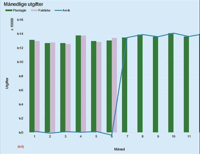 Utgiftsbudsjett for bedrift