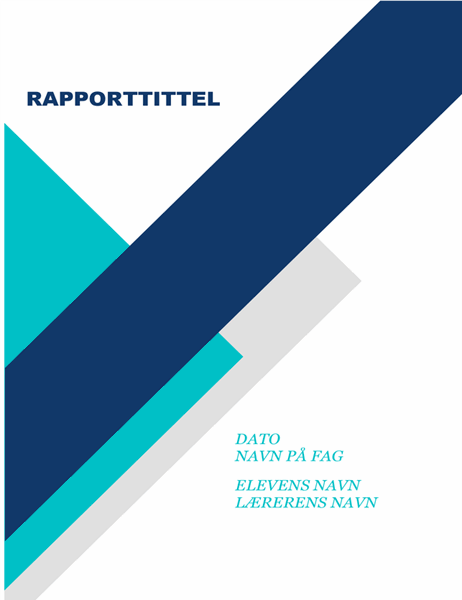 Kreativ studentrapport