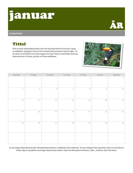 Kalender for øyeblikksbilde