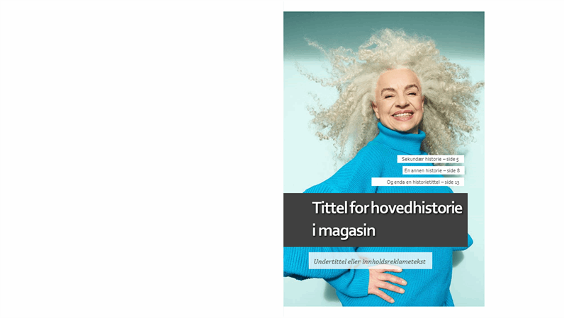 Oppsett for livsstilsmagasin