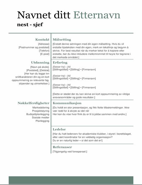 Enkel moderne CV