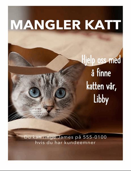 Flygeblad for forsvunnet katt