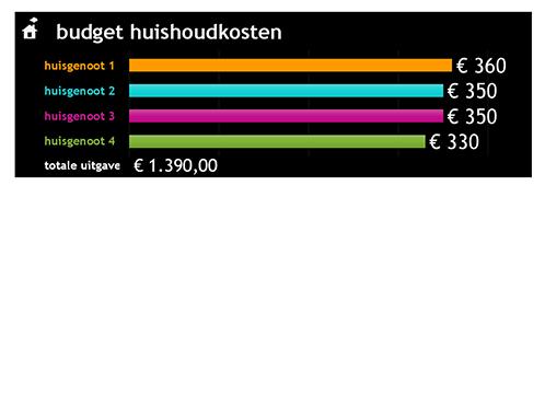 Budget huishoudkosten