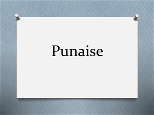 Punaise