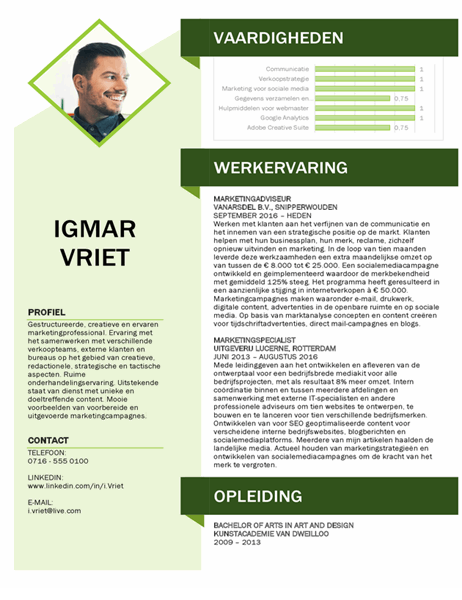 Curriculum vitae voor marketing