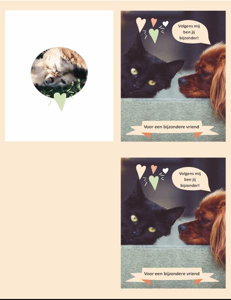Kaart met kittens en puppy's voor elke dag