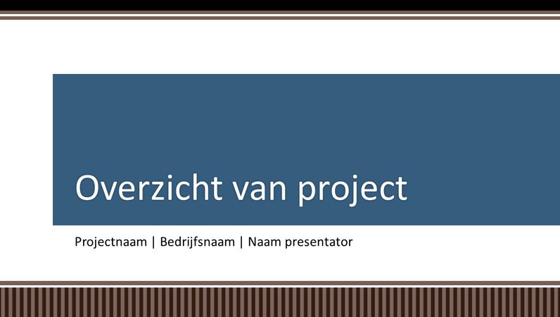 Overzichtspresentatie voor planning zakelijk project