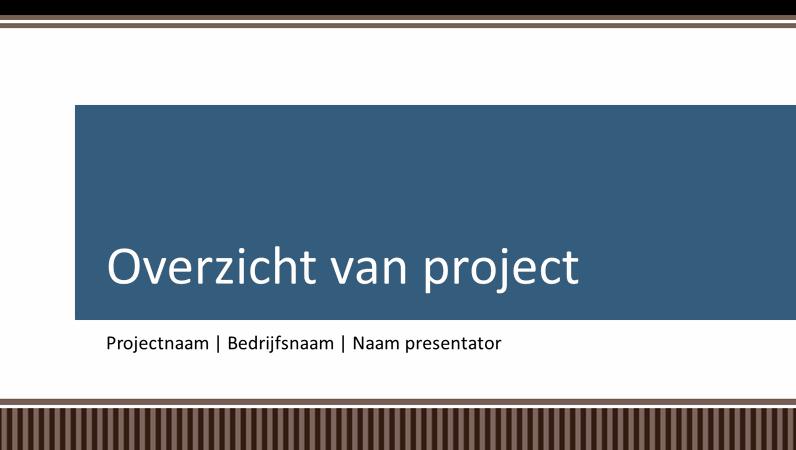 Overzichtspresentatie voor planning van een zakelijk project
