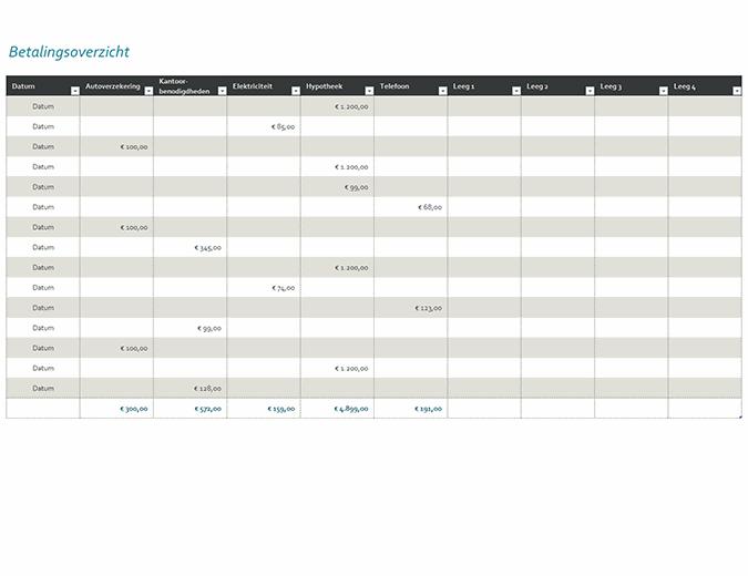 Betalingslogboek