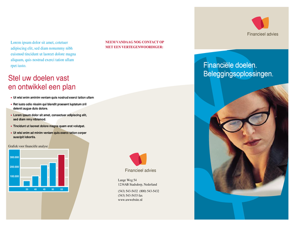 Bedrijfsbrochure voor financiële bedrijven (driedelig)