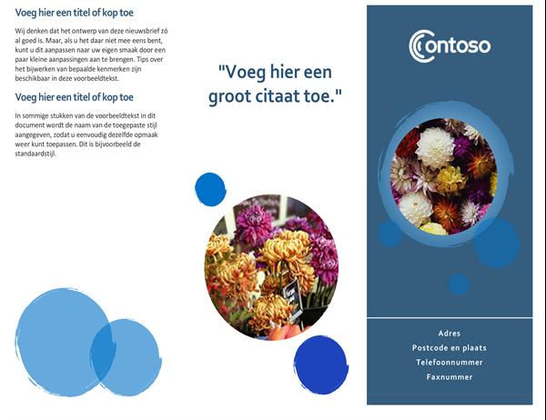 Brochure blauwe bollen