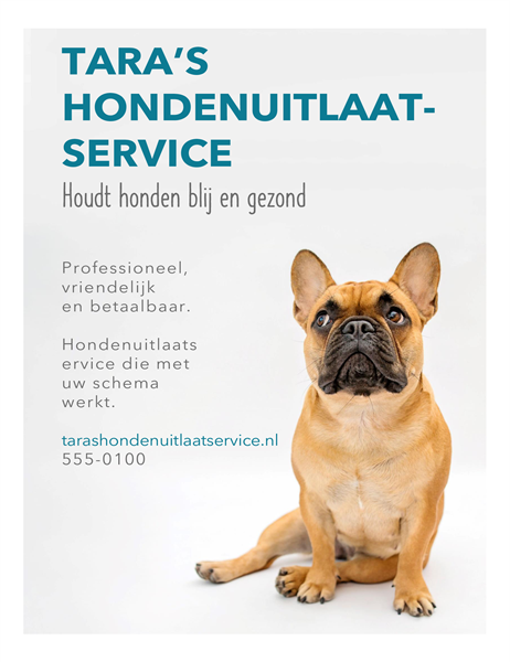 Flyer hondenuitlaatservice