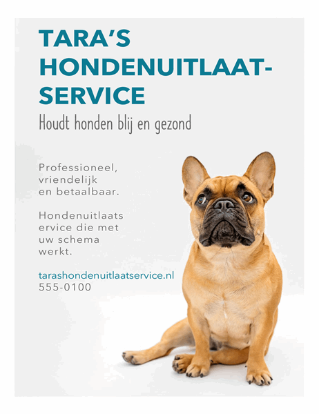 Flyer voor hondenuitlaatservice