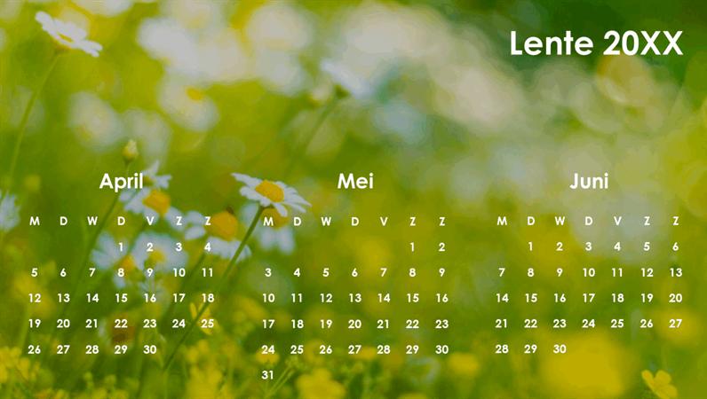 Kwartaalkalender rond het thema van de seizoenen