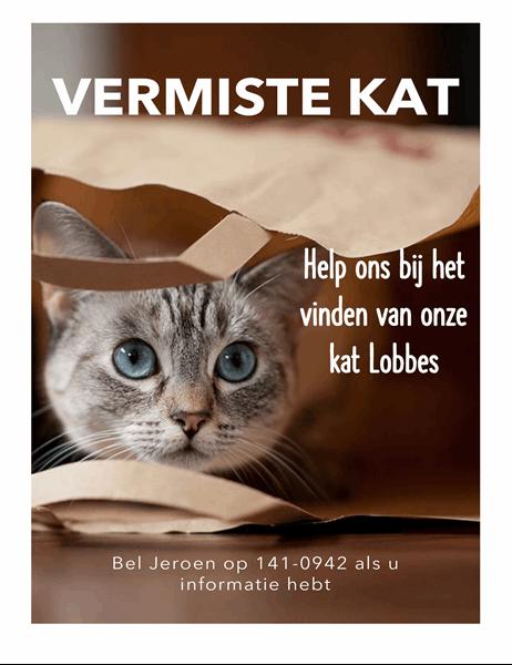 Flyer voor vermiste kat